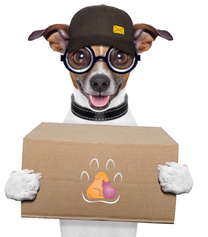 Consegna domicilio prodotti per animali